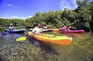 Kayakken in mangrovegebied van Lac Bai (Foto: Tourist Corporation Bonaire)
